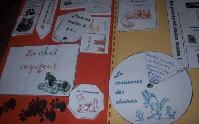 Des exemples de lapbooks