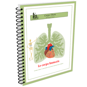 Lapbook Le corps humain