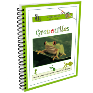 Lapbook Grenouilles